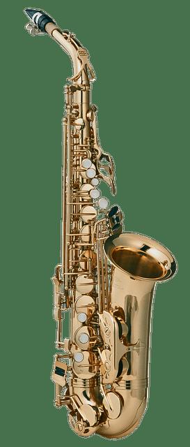Saxophonunterricht in Bonn-Oberkassel | Musikschule mut